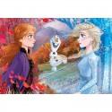 Frozen II Puzzle Maxi 60 Pezzi
