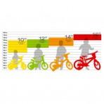 misure bici