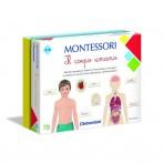 Montessori - Il Corpo Umano